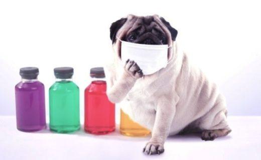 風邪やインフル予防にとりたい栄養素とは?